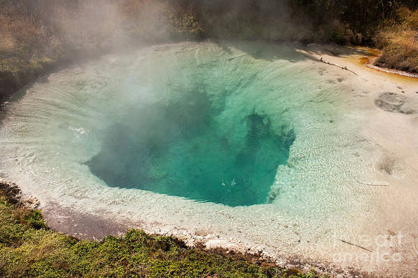 Photograph - Blue Bell Pool In West Thumb Geyser Basin In Yellowstone National Park by Fred Stearns