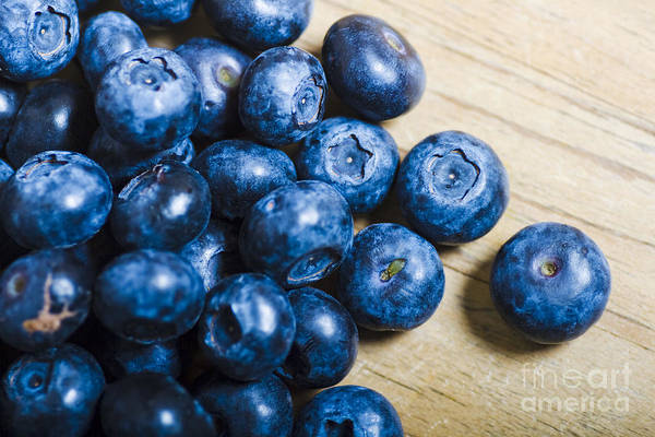 Blue Berry Photograph - Blue Berries  by Jorgo Photography - Wall Art Gallery