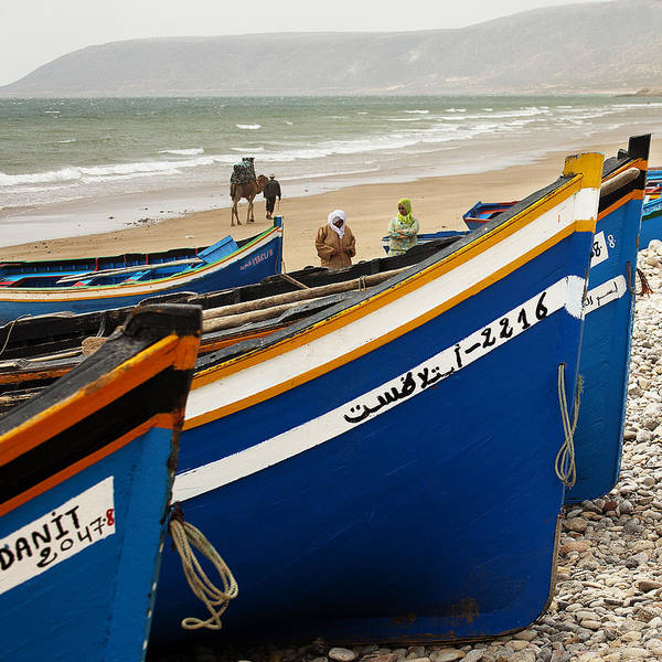 Photograph - Blue Boats And A Camel by David Davies