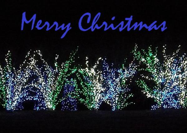 Photograph - Blue Christmas by Darren Robinson