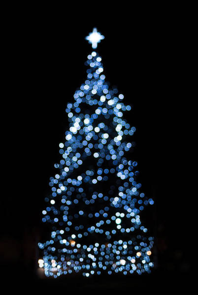 Photograph - Blue Christmas Lights by Terry DeLuco