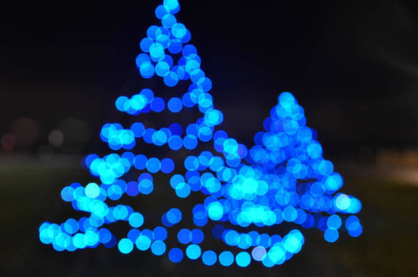 Photograph - Blue Christmas by Steve Myrick