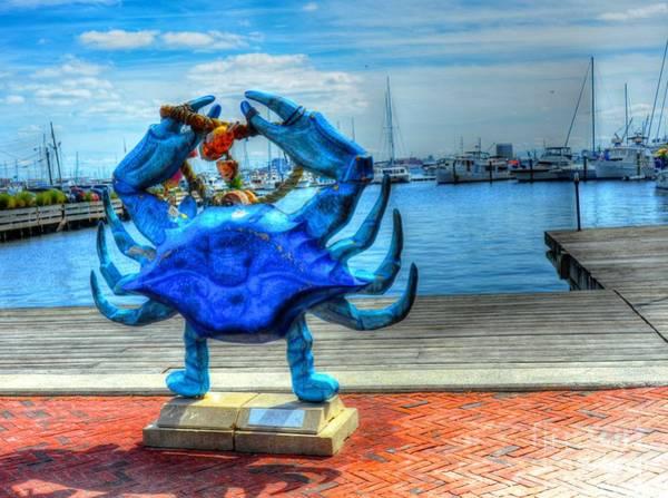 Wall Art - Photograph - Blue Crab by Debbi Granruth