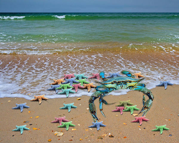 Live Digital Art - Blue Crab Pastel Paradise by Betsy Knapp