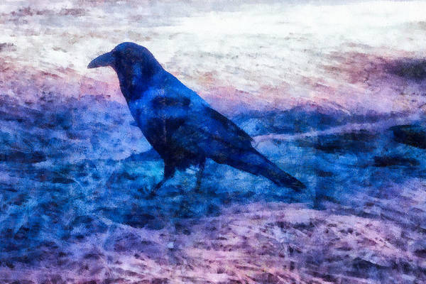 Mixed Media - Blue Crow by Priya Ghose