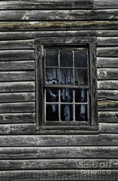 Photograph - Blue Curtain by David Waldrop