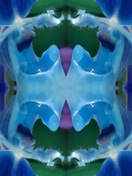 Essence Digital Art - Blue Entrance by Marie-Louise Svensson