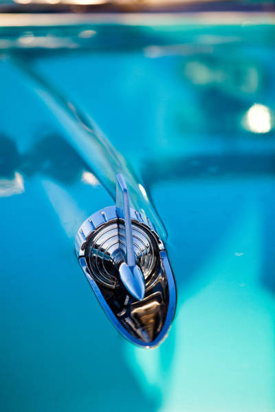 Photograph - Blue Fin by Melinda Ledsome