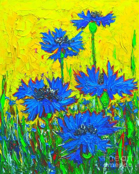Blue Cornflower Painting - Blue Flowers - Wild Cornflowers In Sunlight  by Ana Maria Edulescu