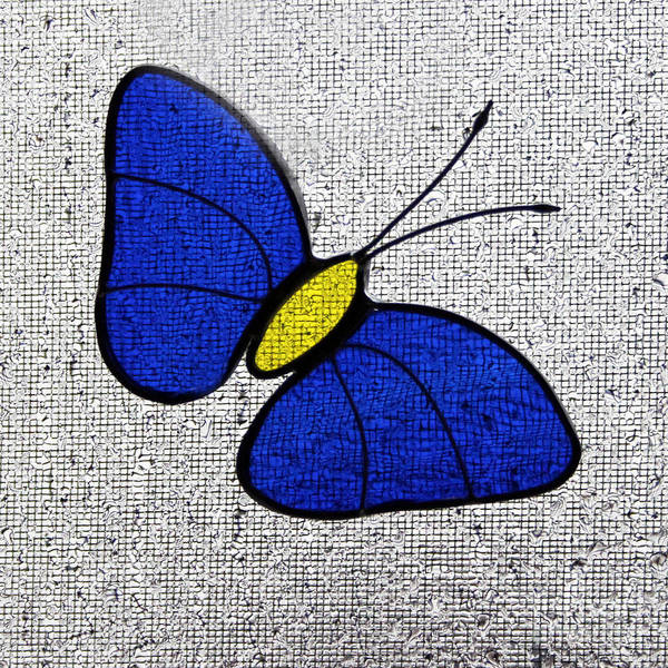 Photograph - Blue Glass Butterfly Square by Karen Adams