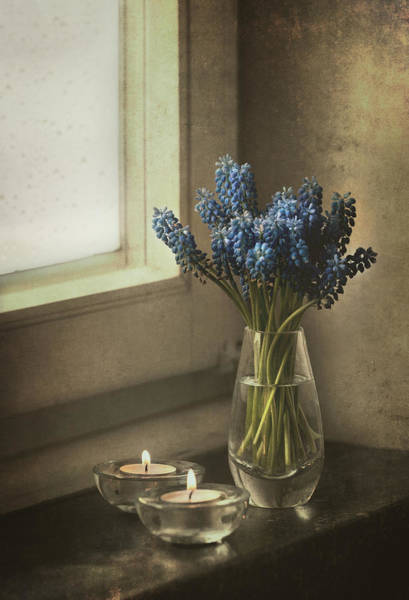 Wall Art - Photograph - Blue Grape Hyacinth Flowers And Lit Candles At The Window by Jaroslaw Blaminsky