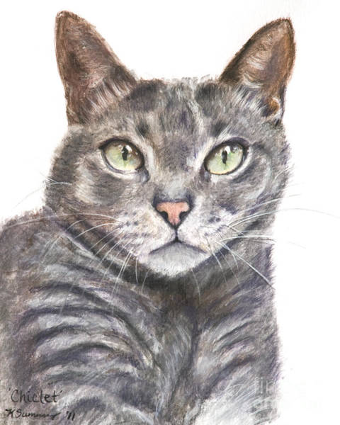 Painting - Blue Grey Cat With Piercing Green Eyes by Kate Sumners