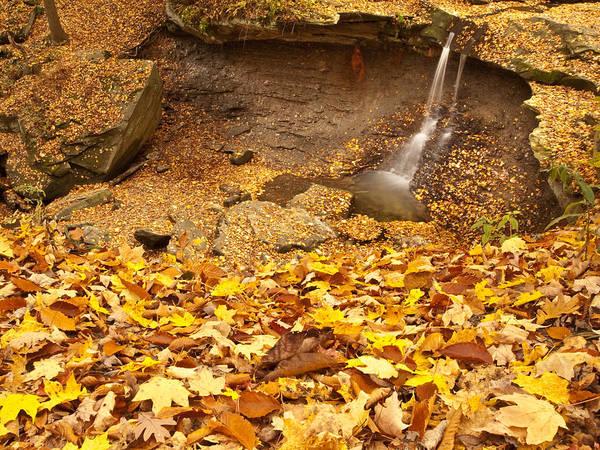 Shannon Falls Wall Art - Photograph - Blue Hen Waterfall by Shannon Workman
