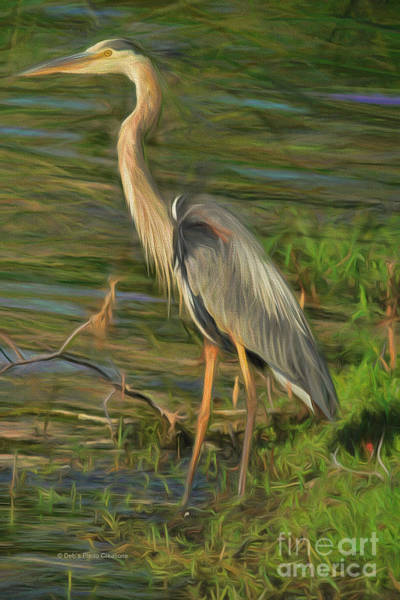 Blue Heron On The Bank Art Print