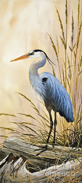Great Blue Heron Wall Art - Painting - Blue Herons Bright Shore by James Williamson