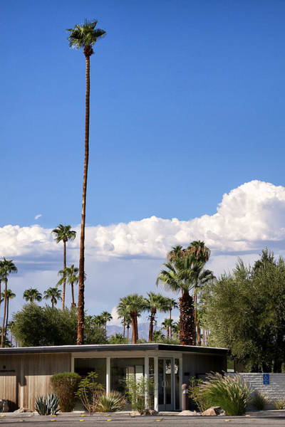 Wall Art - Photograph - Blue Horizon Palm Springs by William Dey