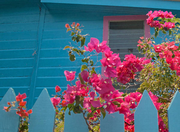 Photograph - Blue House Painting by Susan Rovira
