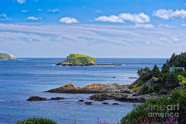Photograph - Blue House With An Ocean View by Les Palenik