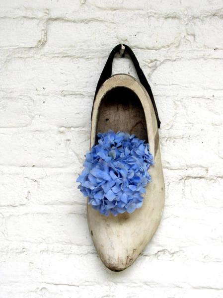 Photograph - Blue Hydrangea by Gerry Bates