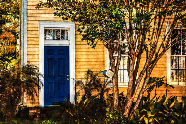 Photograph - Blue In The Tropics by Melinda Ledsome