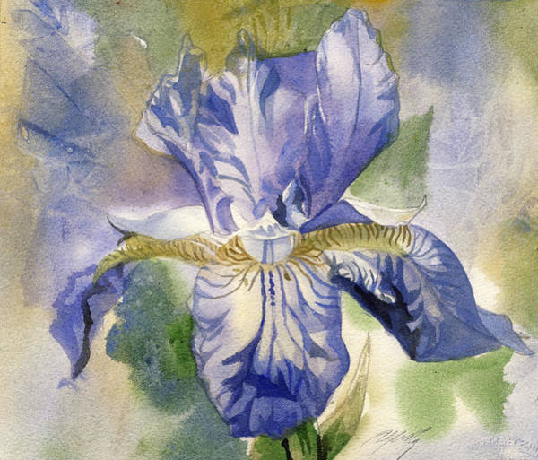 Painting - Blue Iris Watercolor by Alfred Ng