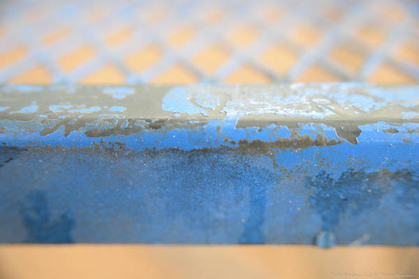 Photograph - Blue Iron by Teresa Blanton