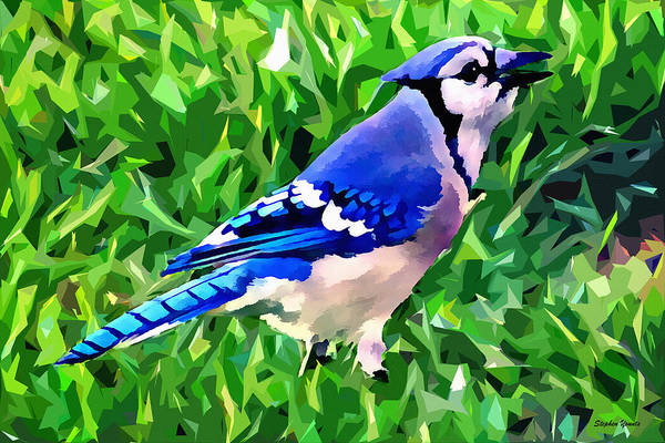 Bird Watching Digital Art - Blue Jay by Stephen Younts