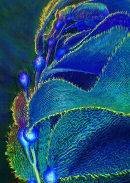 Seaweed Digital Art - Blue Kelp by Jane Schnetlage