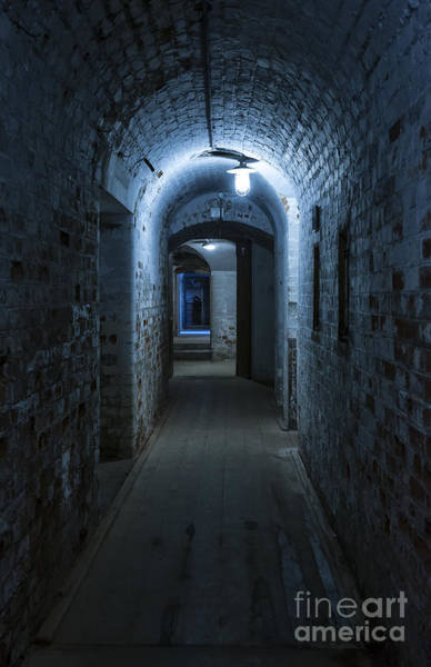 Desolation Photograph - Blue Light by Svetlana Sewell