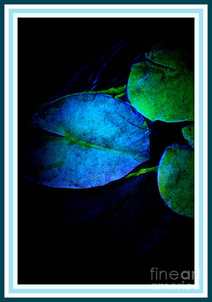 Photograph - Blue Lily Pad by Susanne Van Hulst