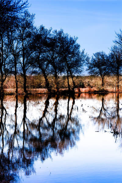 Photograph - Blue Mirror by Edgar Laureano