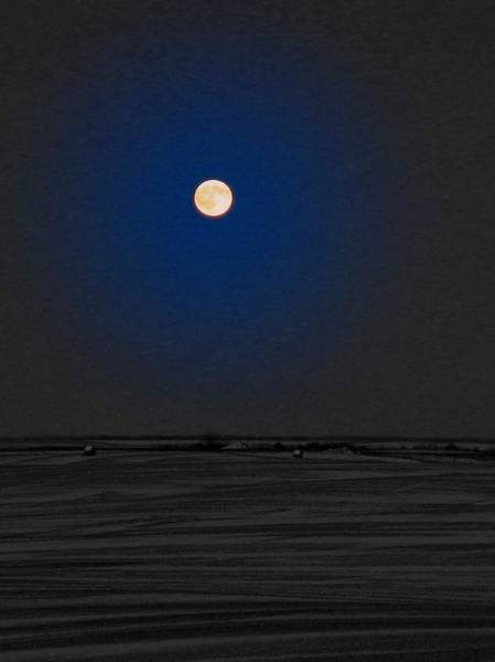 Christy Photograph - Blue Moon by Christy Patino