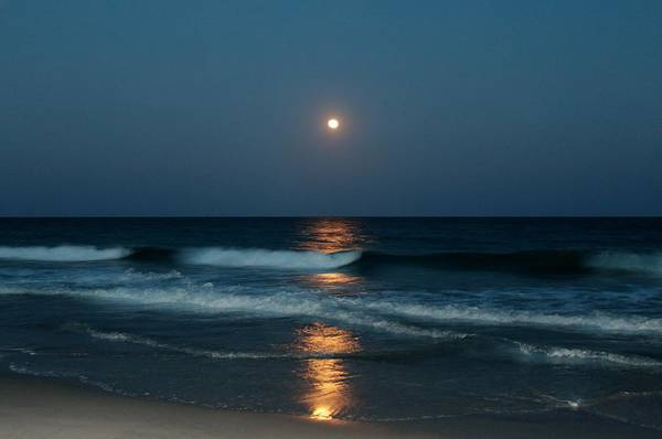 Photograph - Blue Moon by Cynthia Guinn