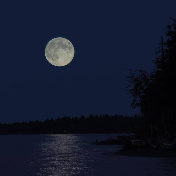 Photograph - Blue Moon by Randy Hall