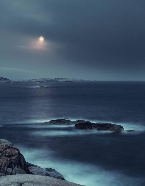 Maritime Provinces Photograph - Blue Moonrise by Shaunl