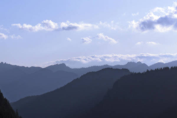 Photograph - Blue Mountains by CE Haynes