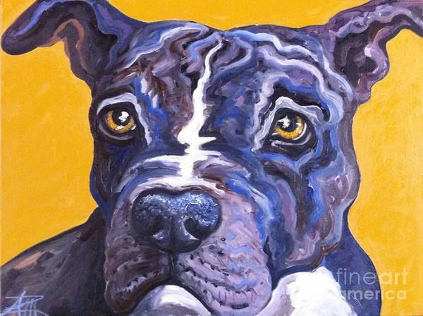 Painting - Blue Nose Pitbull by Ana Marusich-Zanor
