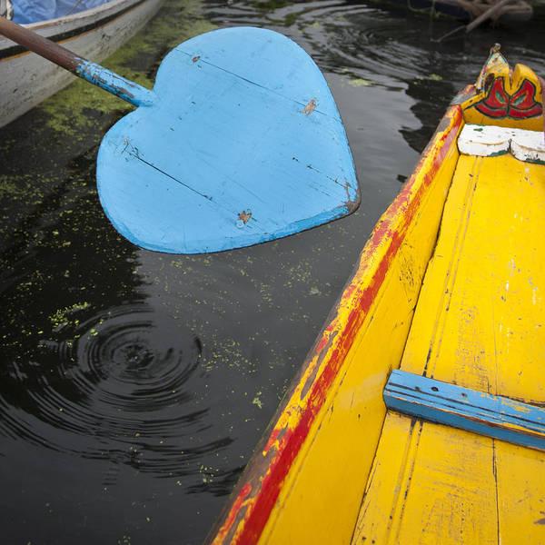 Dal Lake Photograph - Blue Oar by Rachna Shukla