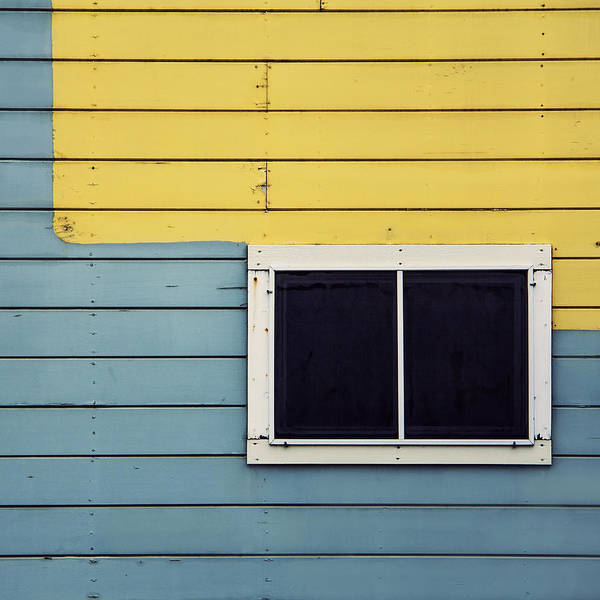 Photograph - Blue On Yellow by Lee Harland