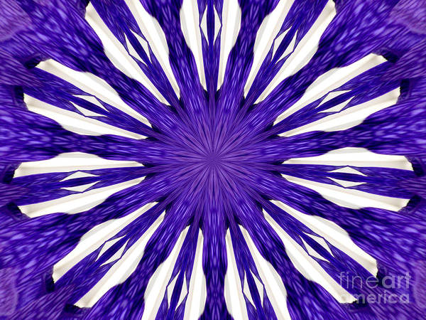 Photograph - Blue Orchid Sunburst Kaleidoscope by Rose Santuci-Sofranko