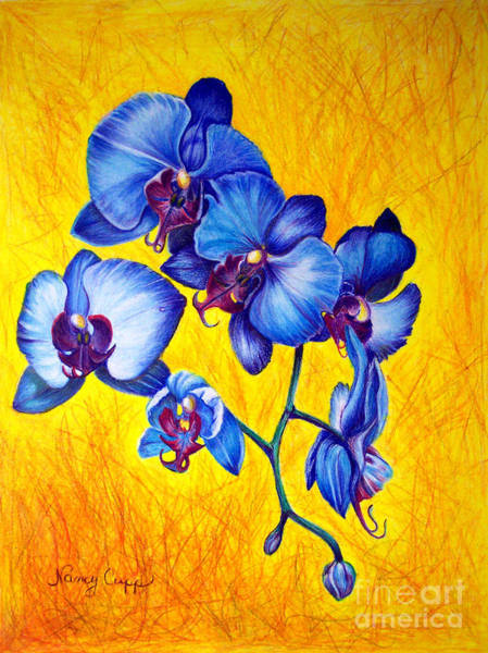 Painting - Blue Orchids 1 by Nancy Cupp