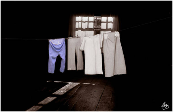 Photograph - Blue Pants On A Duochrome Washline by Wayne King