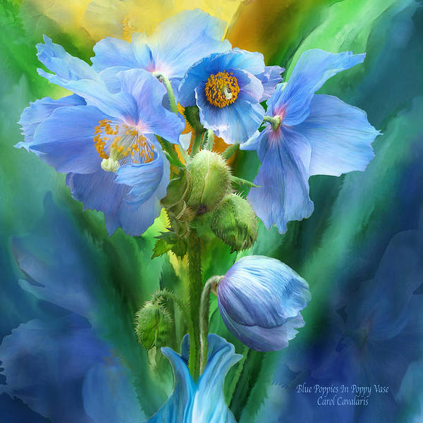 Mixed Media - Blue Poppy Bouquet - Square by Carol Cavalaris