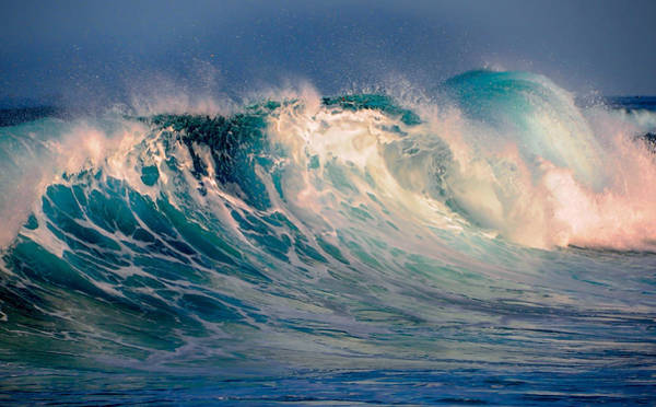 Photograph - Blue Power. Indian Ocean by Jenny Rainbow