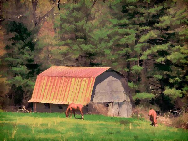Photograph - Blue Ridge Horses by Alice Gipson