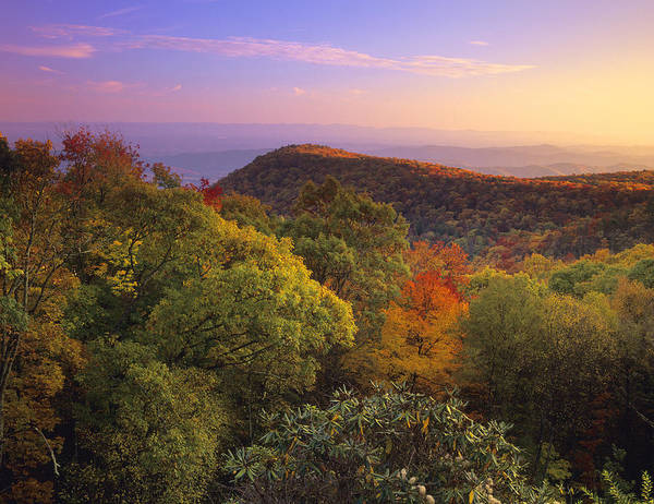 Photograph - Blue Ridge Mountains In Autumn by Tim Fitzharris