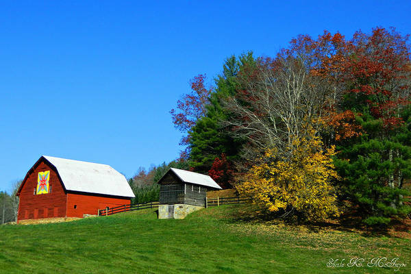 Photograph - Blue Ridge Parkway Barn With Fall Trees by Sheila Kay McIntyre