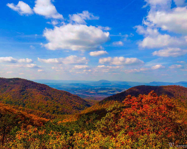 Wall Art - Photograph - Blue Ridge Parkway Fall by Bill Niven