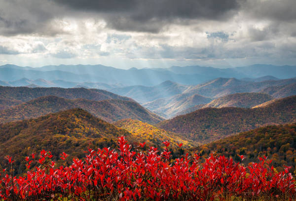 Appalachian Mountains Photograph - Blue Ridge Parkway Fall Foliage - The Light by Dave Allen