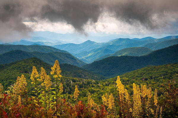 Fall Flowers Photograph - Blue Ridge Parkway Nc Photography North Carolina Scenic Landscape by Dave Allen
